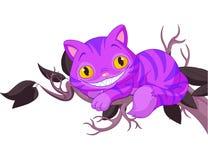 Magic cat Stock Image