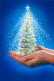 Magic christmas tree in hands Stock Photography