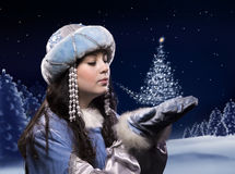 Magic of Christmas in the woods Royalty Free Stock Photo