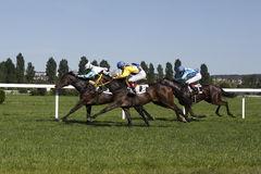 Magic Corfu race at horse racing in Prague Stock Photo