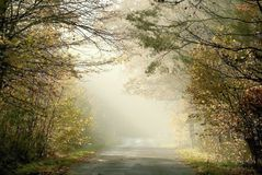 magic country road with the rays of light Royalty Free Stock Image