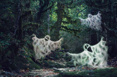 Magic dim light haunted forest with three scary ghosts royalty free stock images