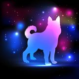 Magic dog with 2018 New Year inscription on the night sky with lights and stars.Dog pink and blue silhouette hologram Stock Photos