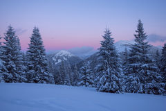 Magic evening in the winter mountains after snowfall Royalty Free Stock Images