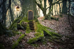 Magic fairy forest. Tree house Royalty Free Stock Images