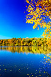 Magic fall over the quiet pond. Stock Photos