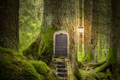 Magic fantasy world. Forest house Stock Image