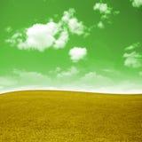 Magic field beautiful, autumn royalty free stock image