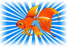 Magic fish. Gold fish with bubbles isolated on transparent background Stock Images