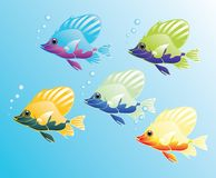 Magic fishes Royalty Free Stock Photos
