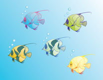 Magic fishes2 Stock Images