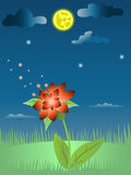 Magic flower on moon glade Stock Images