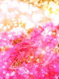Magic Flowers Stock Images