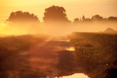 Magic fog over rural farm road Stock Photography