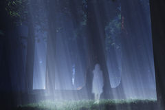 Magic Forest Ghost 2. Magic Forest with Japanese Ghost Yurei 3D artwork Stock Images