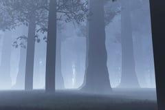 Magic Forest night. Magic Deep Forest 3D artwork royalty free illustration