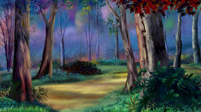 Magic forest on sunset. Digital painting of the Magic forest on sunset with path between trees royalty free illustration