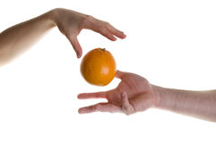 Magic fruit. Illusion with two hands and orange fruit Royalty Free Stock Images