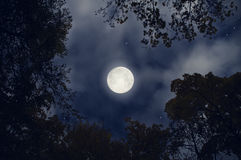 Magic full moon. Full moon in the night sky Stock Photo