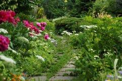 Magic garden. Photo with the image of summer garden Stock Photography