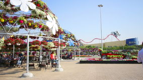 Magic garden time lapse from dubai city stock footage