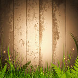 Magic grass over wooden background. With spotlight for your advertising Royalty Free Stock Images