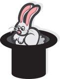 Magic Hat Rabbit Stock Photo