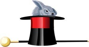 Magic hat rabbit Stock Photos