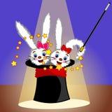 Magic hat and rabbits Stock Image