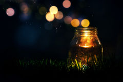Magic Jar. Glass jar in the grass at night with magic lights flying around Royalty Free Stock Photos