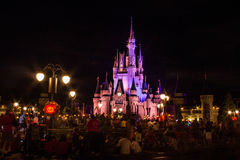 Magic Kingdom castle. Image of the Magic Kingdom Park castle Royalty Free Stock Photography