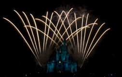 Magic Kingdom firework. Firework in Disney`s Magic Kingdom in Orlando Stock Images