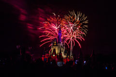 Magic Kingdom fireworks 4. Image of the Magic Kingdom Park castle with fireworks in the background Royalty Free Stock Photos