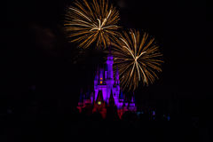 Magic Kingdom fireworks 6. Image of the Magic Kingdom Park castle with fireworks in the background Royalty Free Stock Photos
