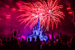 Magic Kingdom fireworks 11. Image of the Magic Kingdom Park castle with fireworks in the background Royalty Free Stock Photography