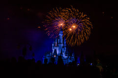 Magic Kingdom fireworks 12. Image of the Magic Kingdom Park castle with fireworks in the background Royalty Free Stock Photography