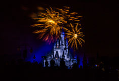 Magic Kingdom fireworks 18. Image of the Magic Kingdom Park castle with fireworks in the background Royalty Free Stock Photo