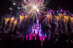 Magic Kingdom fireworks 19. Image of the Magic Kingdom Park castle with fireworks in the background Royalty Free Stock Photos