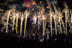 Magic Kingdom fireworks 21. Image of the Magic Kingdom Park castle with fireworks in the background Royalty Free Stock Photography