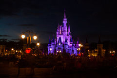 Magic Kingdom Royalty Free Stock Photo