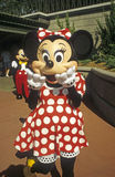 Magic Kingdom - Minnie Mouse with Mickey Mouse Stock Photos