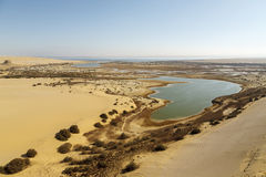 Magic Lake. The Magic Lake in south of Fayoum, Egypt Royalty Free Stock Images