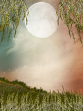 Magic landscape stock illustration