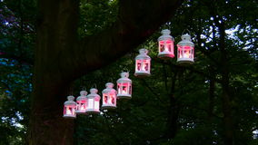 Magic lanterns. Lanterns hanging on the tree at night in the park are glowing in pink and the foliage color on the left changes from green to blue making stock footage