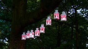 Magic lanterns stock footage