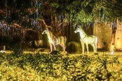 Magic led lighting park. Colorful magic led light decorate  the park  at night, China, Asia Stock Photo
