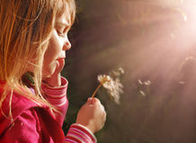 Magic light. Little girl blowing dandelion at sunset Stock Images