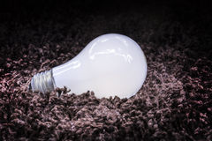 Magic Lightbulb. A trick shot of an illuminated lightbulb on a carpet Royalty Free Stock Photography
