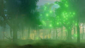 Magic lights in misty night forest 4K