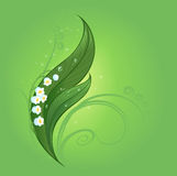 Magic lily of the valley. With a clear drop of dew on the beautiful green leaves painted on a green glowing background Stock Photography
